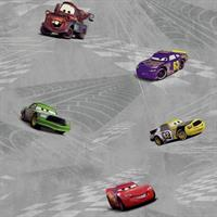 Disney Cars Toile