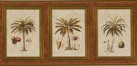Exotic Palms Print Wallpaper Border