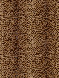 Leopard Spots Wallpaper