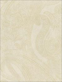 Textured Paisley Damask