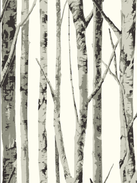 Eh61008 birch trees wallpaper eco chic sbk14258 for Tree wallpaper for walls