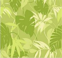 Tropical Wallpaper